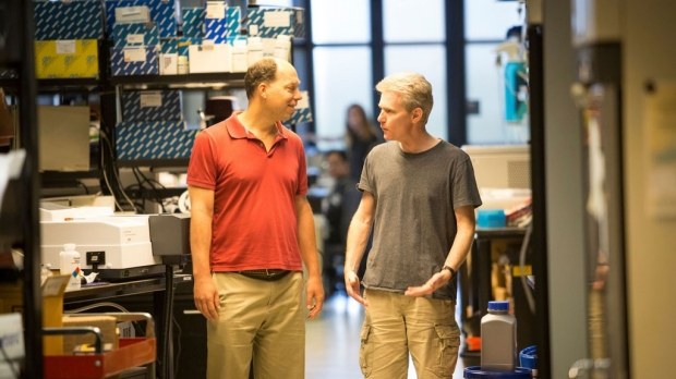 Stanford part of Bay Area Biohub collaboration for health research