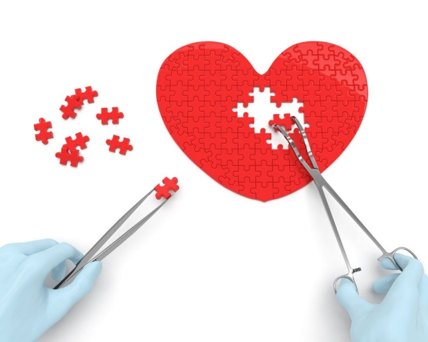 Heart-shaped puzzle being assembled by gloved hands