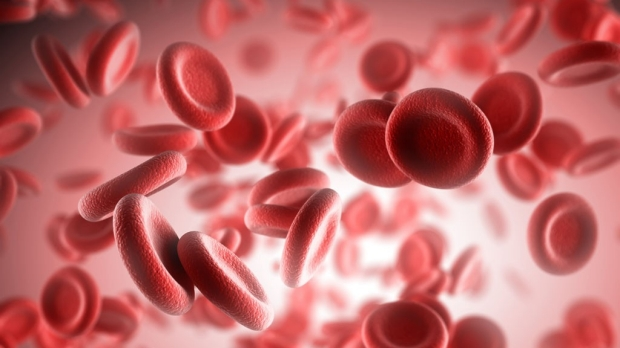 Withholding amino acid depletes blood stem cells