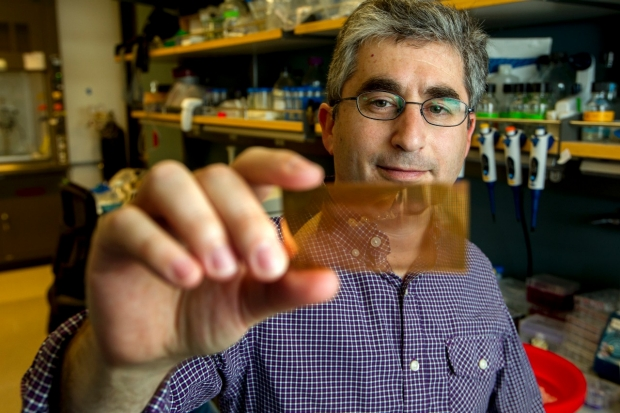 Scientist looking at a filter he's holding near his face