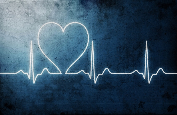 Illustration of a heartbeat reading on an EKG in which the line forms a heart