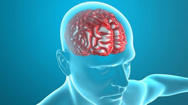 Antibody fights pediatric brain tumors in preclinical testing