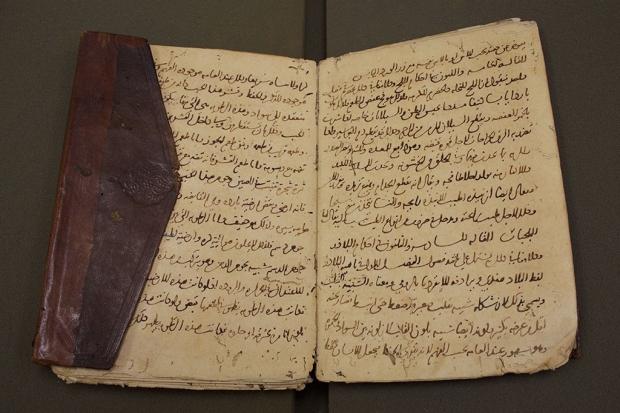 An old anatomy manuscript