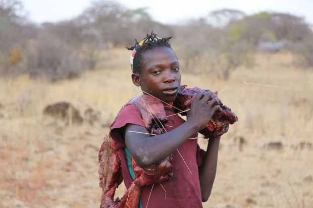 Hadza boy carrying raw meat on his shoulder