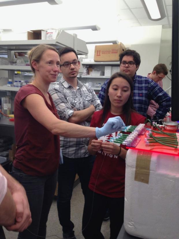 Four scientists working around a microfluidics machine