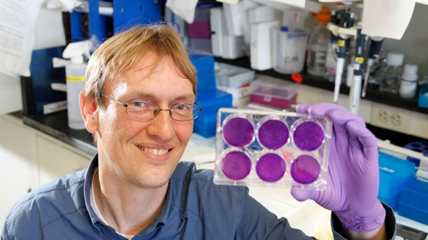 Drug blocks Zika, other mosquito-borne viruses in cell cultures