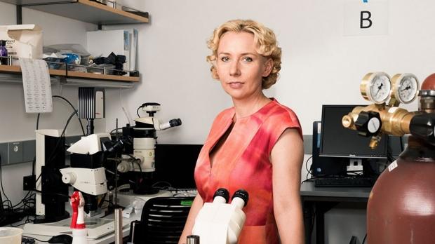 Analysis reveals surprising DNA secrets