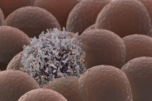 Illustration of a cancer cell among regular cells