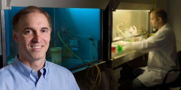 Steven Artandi in his lab