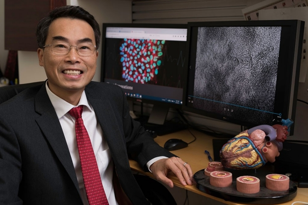 Joseph Wu sitting near a model of a heart
