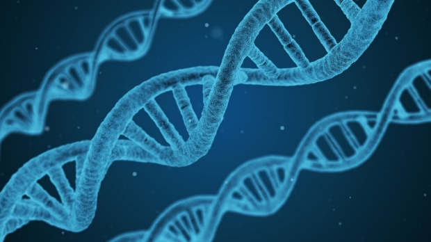 Repeated DNA arrays can confer psychiatric risks