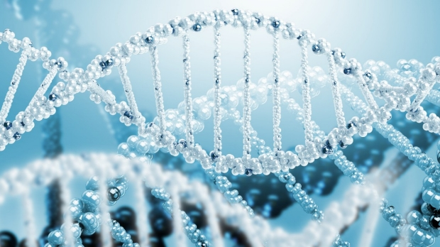 New algorithm could improve diagnosis of rare diseases
