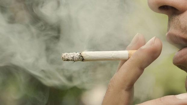 Grant funds tobacco research
