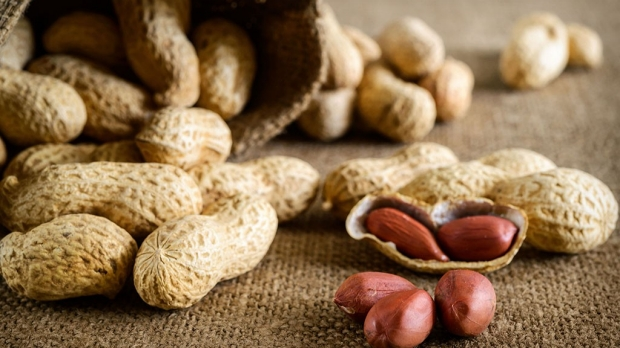 5 Questions: Progress in peanut-allergy immunotherapy