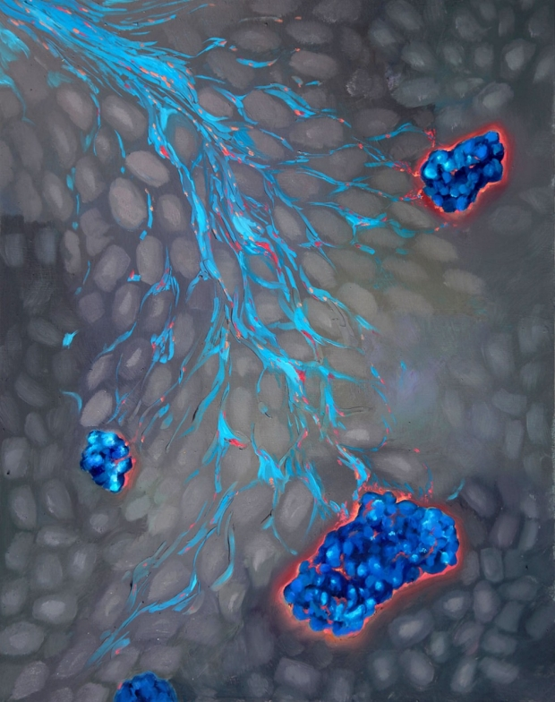 Illustration of beta cells