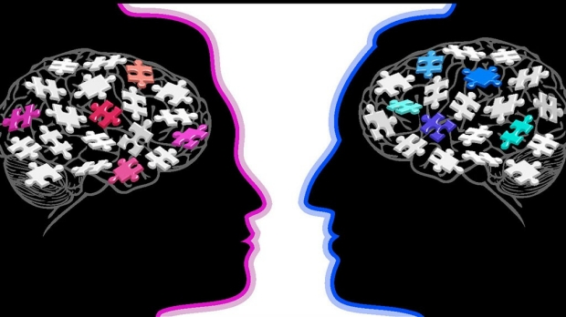 Hard-wired male/female brain differences