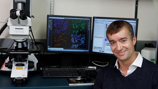Bundle of cells produces pain aversion