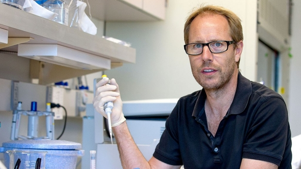 Blocking protein's activity restores cognition in old mice