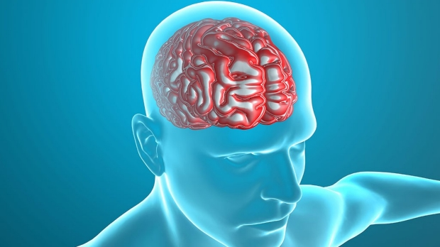 Possible role of deep brain structure in concussion
