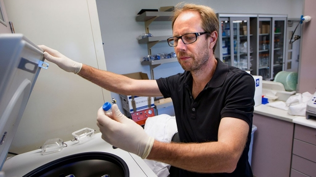 Blocking protein curbs memory loss in old mice