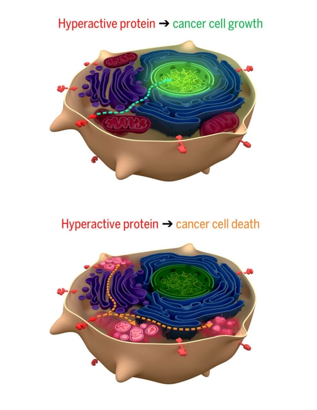 Illustration of cancer growth