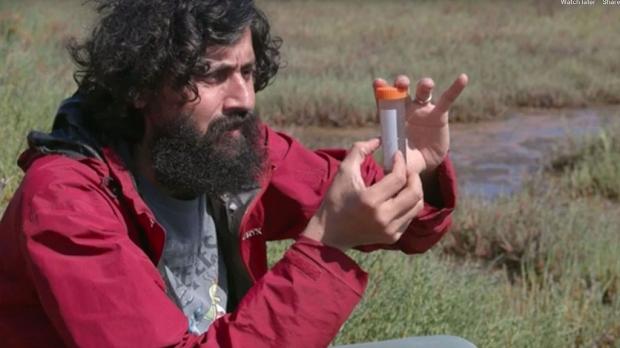 Ultra-fast communication in aquatic microbes