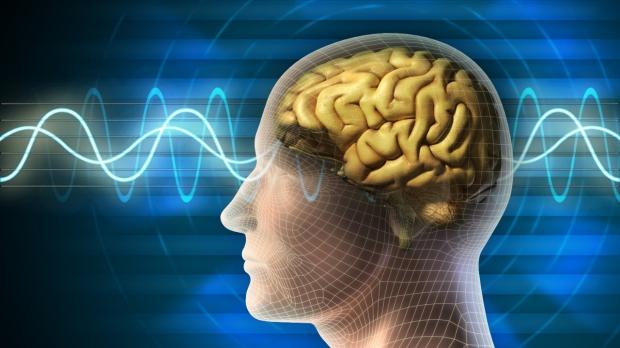 Brain waves can determine drug response