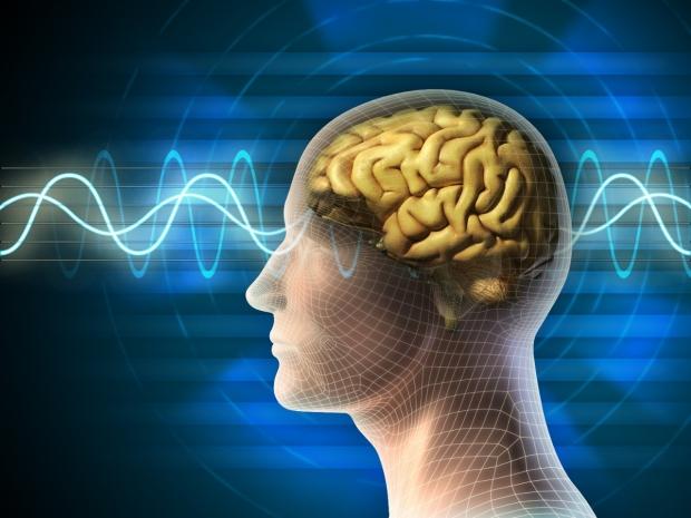 brain wave graphic