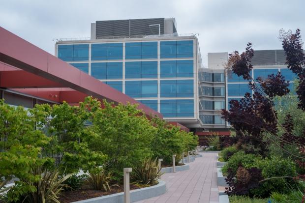 Stanford Hospital garden