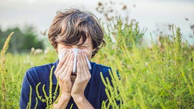 Climate change lengthening allergy season