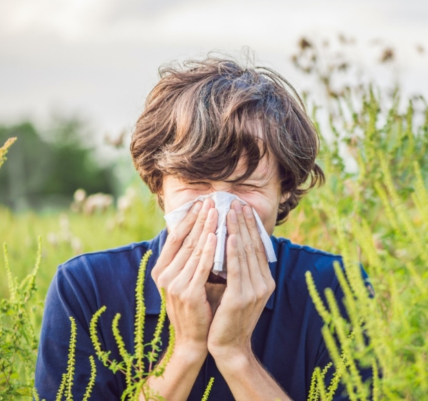 boy in field with allergies