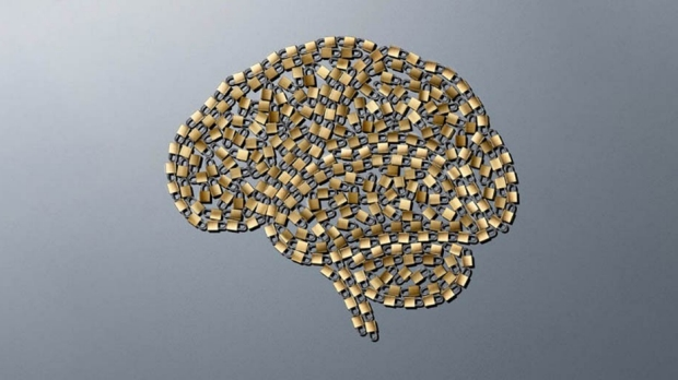 Stanford Medicine magazine explores the brain and nervous system