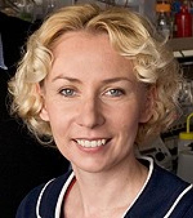 Joanna Wysocka, PhD
