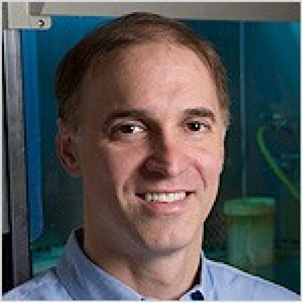 Steven Artandi, MD, PhD