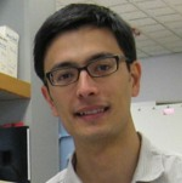 David Breslow, PhD