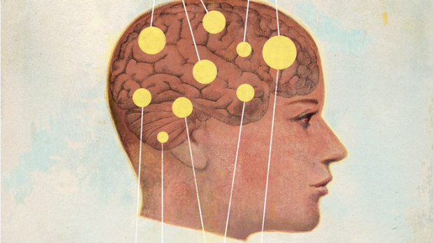 Inside the heads of men and women: A look at sex-based cognitive differences