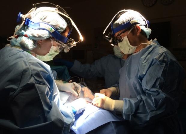 melanoma operation