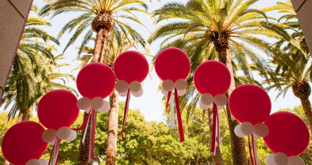 Balloons in front of the palm trees
