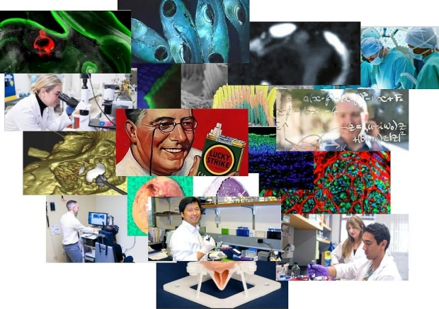 research-collage-OHNS-Stanford
