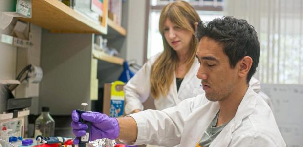 The Jayakar Nayak lab's team members working the lab
