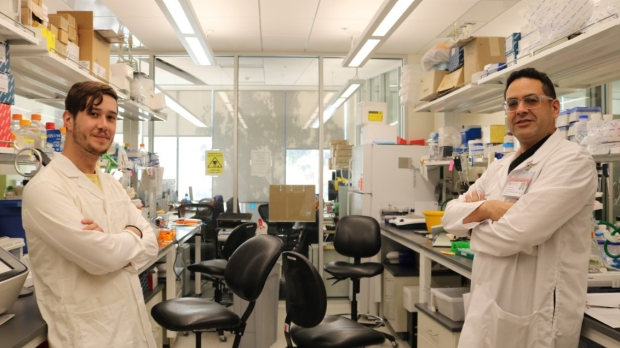 Precision Medicine Will Rely on Proteins, Not Just DNA
