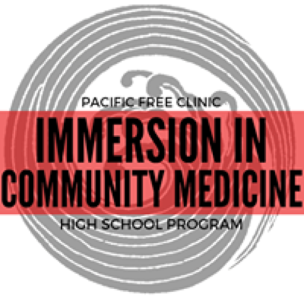 Immersion in Community Logo