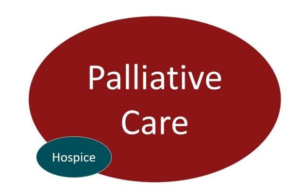 Resize_Palliative-Care-vs-Hospice
