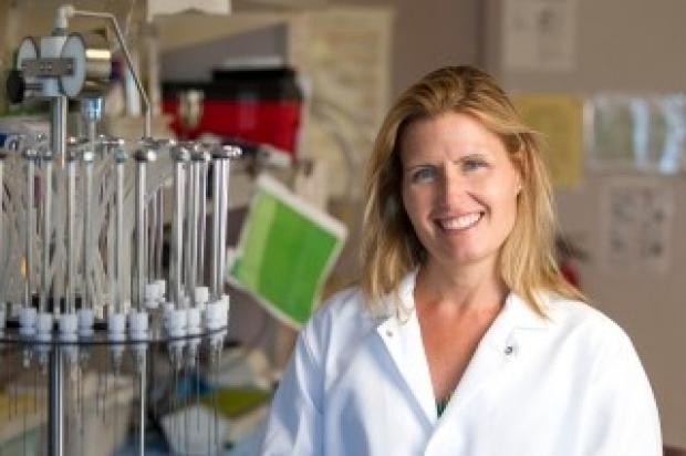 Dr. Karen J. Parker