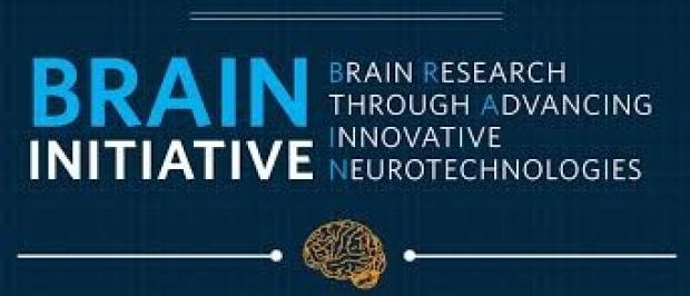 NIH Brain Initiative Logo