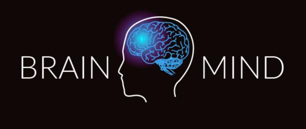 Brain_Mind_Summit_Logo
