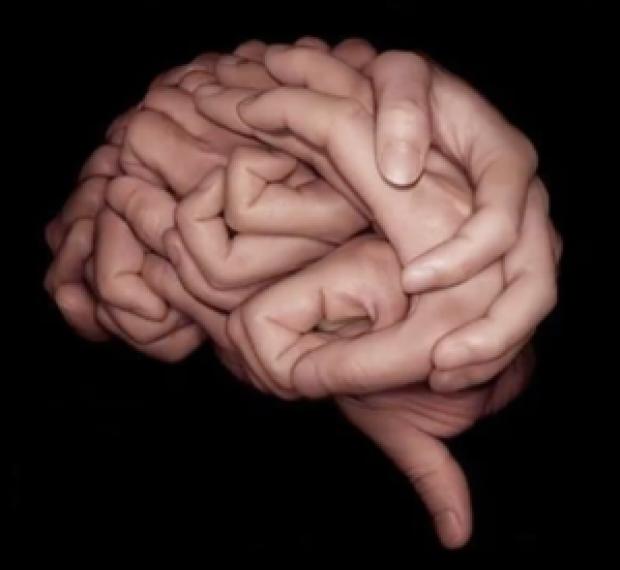 brainhandsmall-300x276