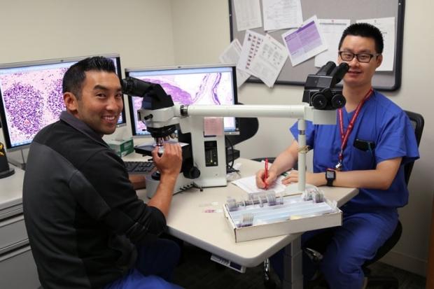Fellows at microscopes