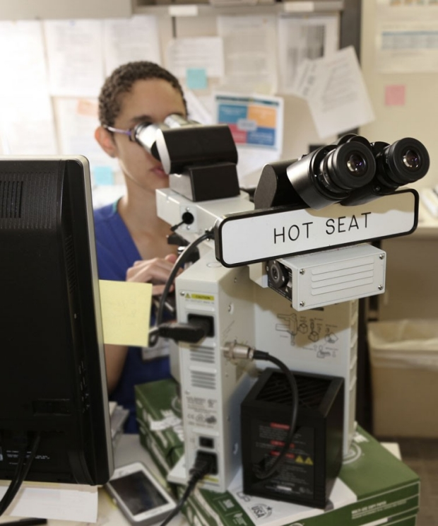 Pathologist viewing through microscope