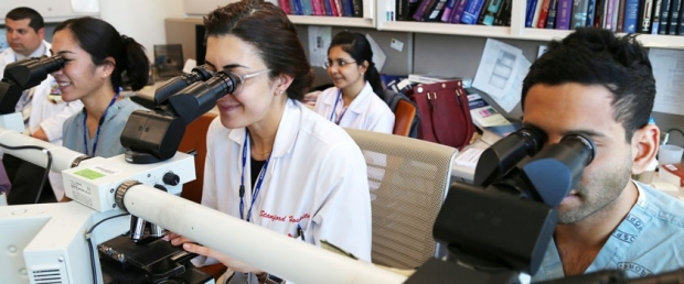 Students viewing through microscopes